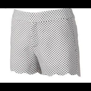 Navy White polka dot scalloped shorts Elle Size 10